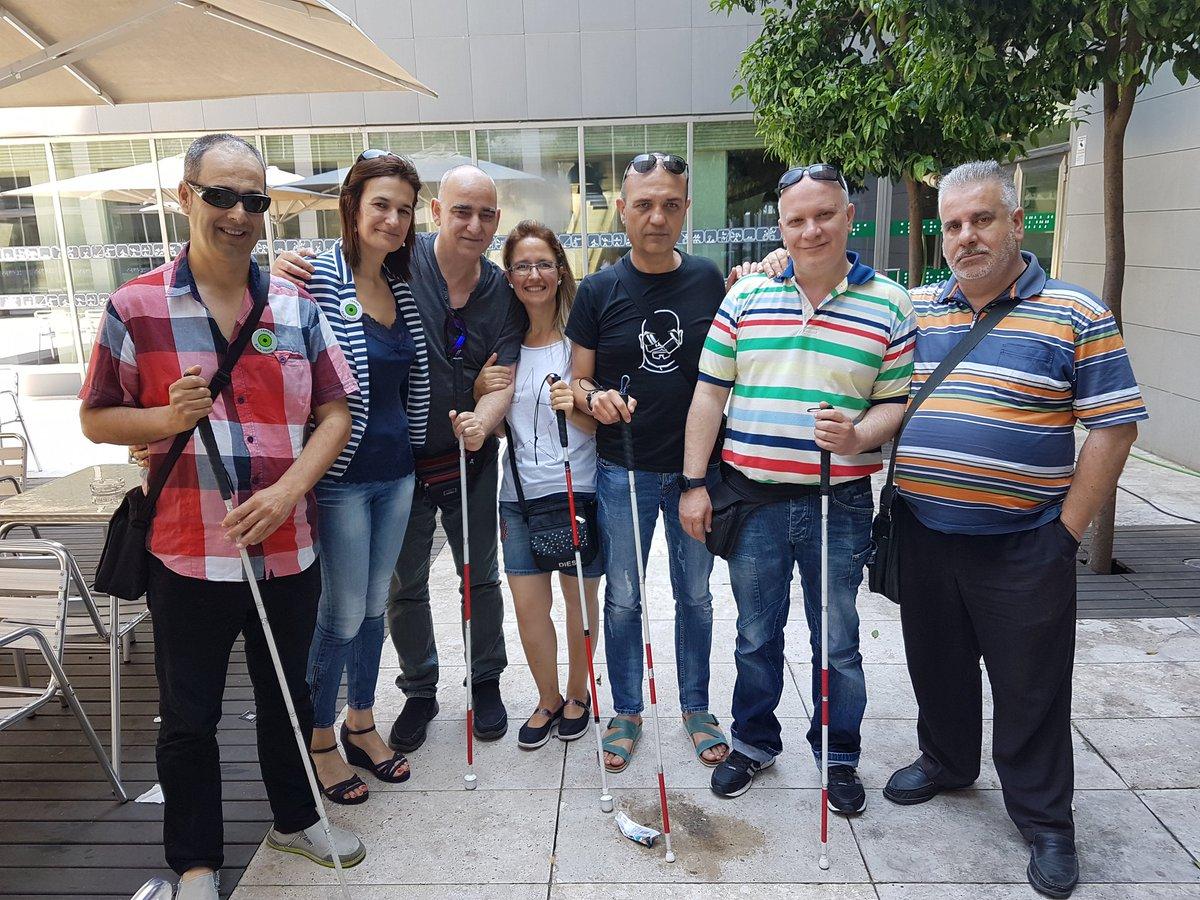 Grupo de personas con bastón rojo y blanco identificador de sordoceguera, con bastón blanco para ceguera y con distintivo #TengoBajaVisión para baja visión