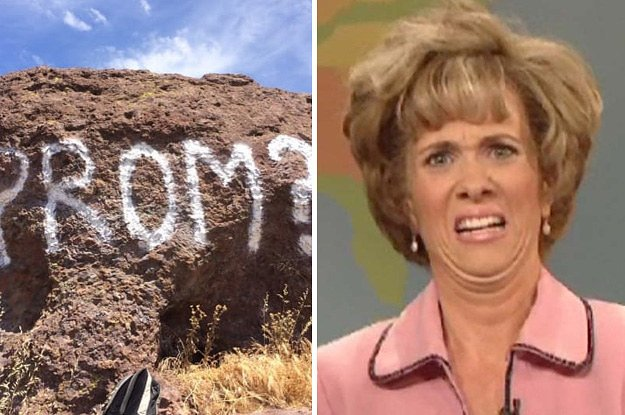 Someone spray-painted a promposal in a national park and dfjgdjshfg ht...