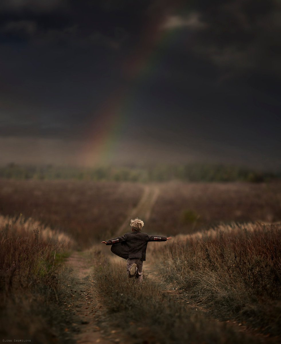 A person is a fool to become a writer. His only compensation is absolute freedom. Roald #Dahl #writing #acting #film #Art Elena Shumilova <br>http://pic.twitter.com/oFBzgOjWP5