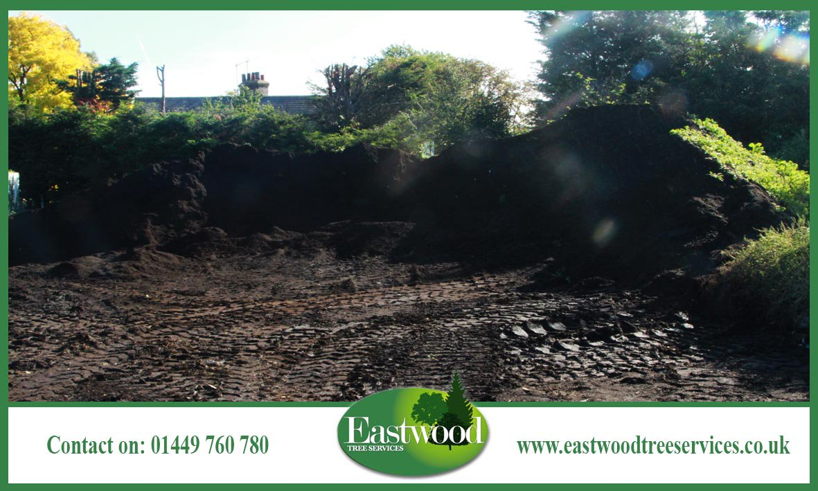 If you&#39;d like to know more about any of our services, please call 01449 760 780. #Eastwood #TreeSurgery #TreeSurgeon<br>http://pic.twitter.com/beVDVEreeO