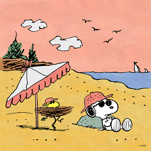 Peanuts on twitter summer plans - Charlie brown bilder ...