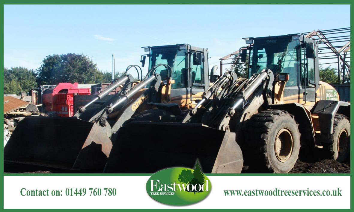 Like #Eastwood Tree Services on Facebook &gt;&gt;&gt;  http:// bit.ly/EastwoodTreeSe rvicesFacebook &nbsp; …  #Suffolk #Norfolk #TreeSurgery<br>http://pic.twitter.com/HnICiROqNv