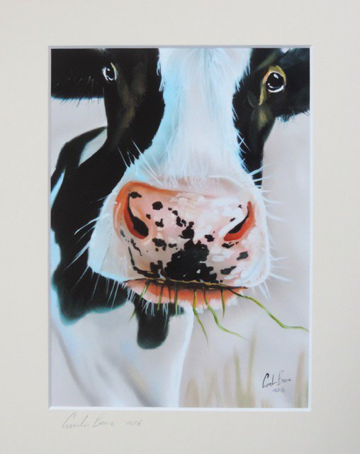 Black and white cow face portrait    http:// cgi.ebay.co.uk/ws/eBayISAPI.d ll?ViewItem&amp;item=381917051014#ht_2241wt_1081 &nbsp; …   #art <br>http://pic.twitter.com/tYvEVXsMO4