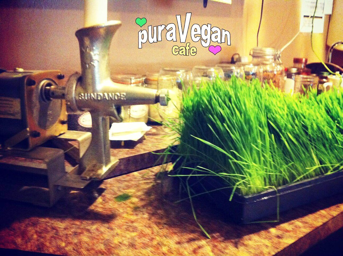 Wheatgrass Special!!! $1 per ounce Enjoy a little #detox for your system on this holiday weekend! #plantbased #vegan #stl #juice #raw<br>http://pic.twitter.com/LNCJ5uTeuh
