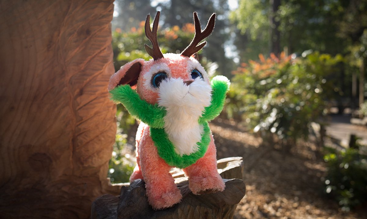 test Twitter Media - Don't forget, you can pick up your very own forest creature from Just Kids or The Store Room #justimagine https://t.co/fsK3teqrHK