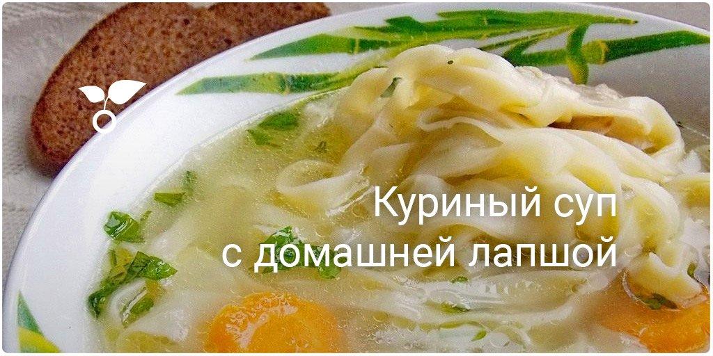 Куриный суп с домашней лапшой калорийность