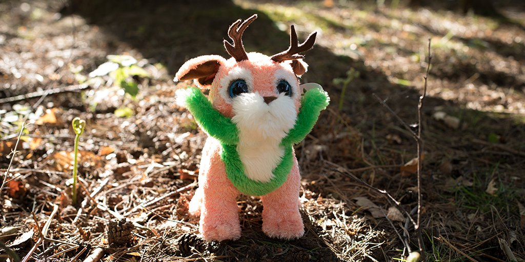 test Twitter Media - Still time to win a forest creature! Share a photo of your family using their imagination, tag @CP_UK_Longleat and use #justimagine https://t.co/85EX5bI7sv