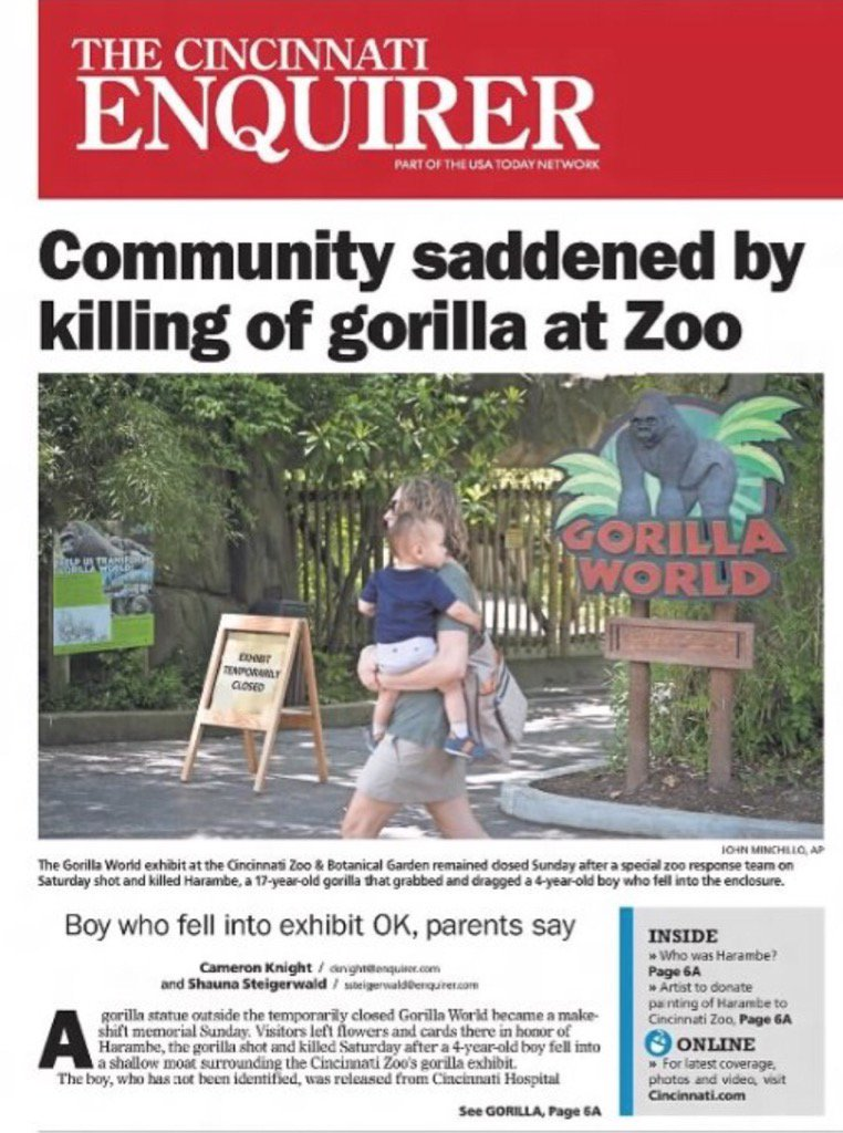 One Year Ago Today: We lost a good one. RIP Harambe https://t.co/wssoP...