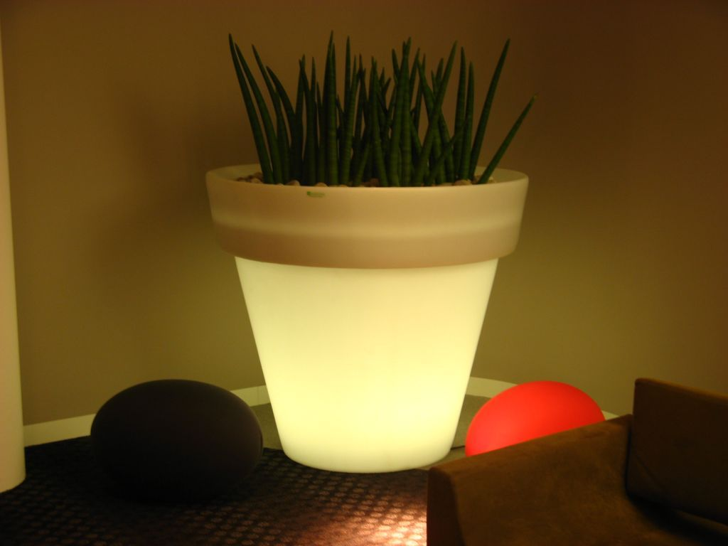 Looking to make an impact?  We can suggest unique planters such as this one which illuminates. #planters #plants #luxuryplants #officeplant <br>http://pic.twitter.com/sFadlLzd2v