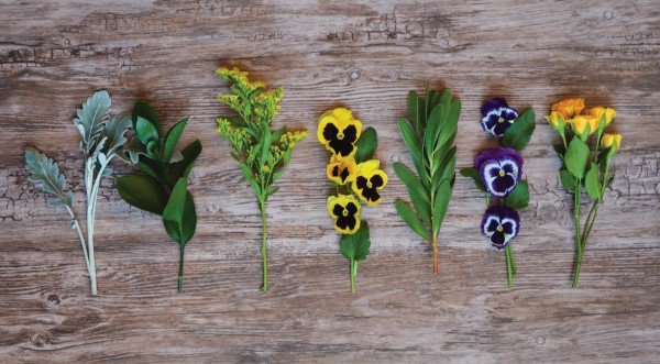 Creative Gift-Giving with DIY Pansy Crafts