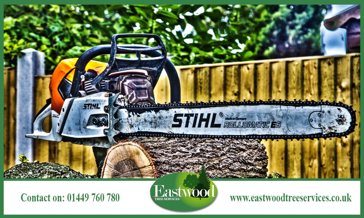 Click here to eradicate Japanese #Knotweed from your property &gt;  http:// bit.ly/EastwoodTreeSe rvicesKnotweed &nbsp; …  #Eastwood <br>http://pic.twitter.com/totsi6gTW7