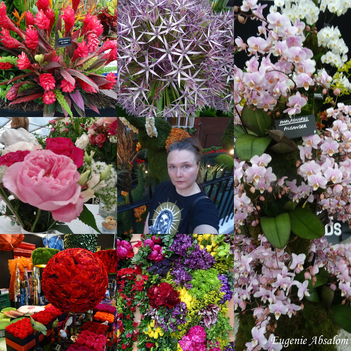 Eugenie Absalom On Twitter Selfies With Beautiful Flowers From