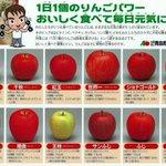 青森県民は小学生になるとこういう下敷きを学校で配られるから、りんごの品種は見た目だけでなんとなくわか…