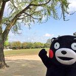 おはKUMAMONday〜!今週もエイエイモーン! pic.twitter.com/FKnswdcw…