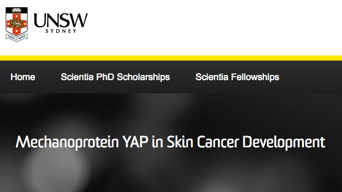 #Scientia #PhD opportunity available at @UNSW with @amoz1972, @TCox_Lab &amp; @dgoaim   http://www. 2025.unsw.edu.au/apply/scientia -phd-scholarships/mechanoprotein-yap-skin-cancer-development &nbsp; … <br>http://pic.twitter.com/sz53nAWpKt