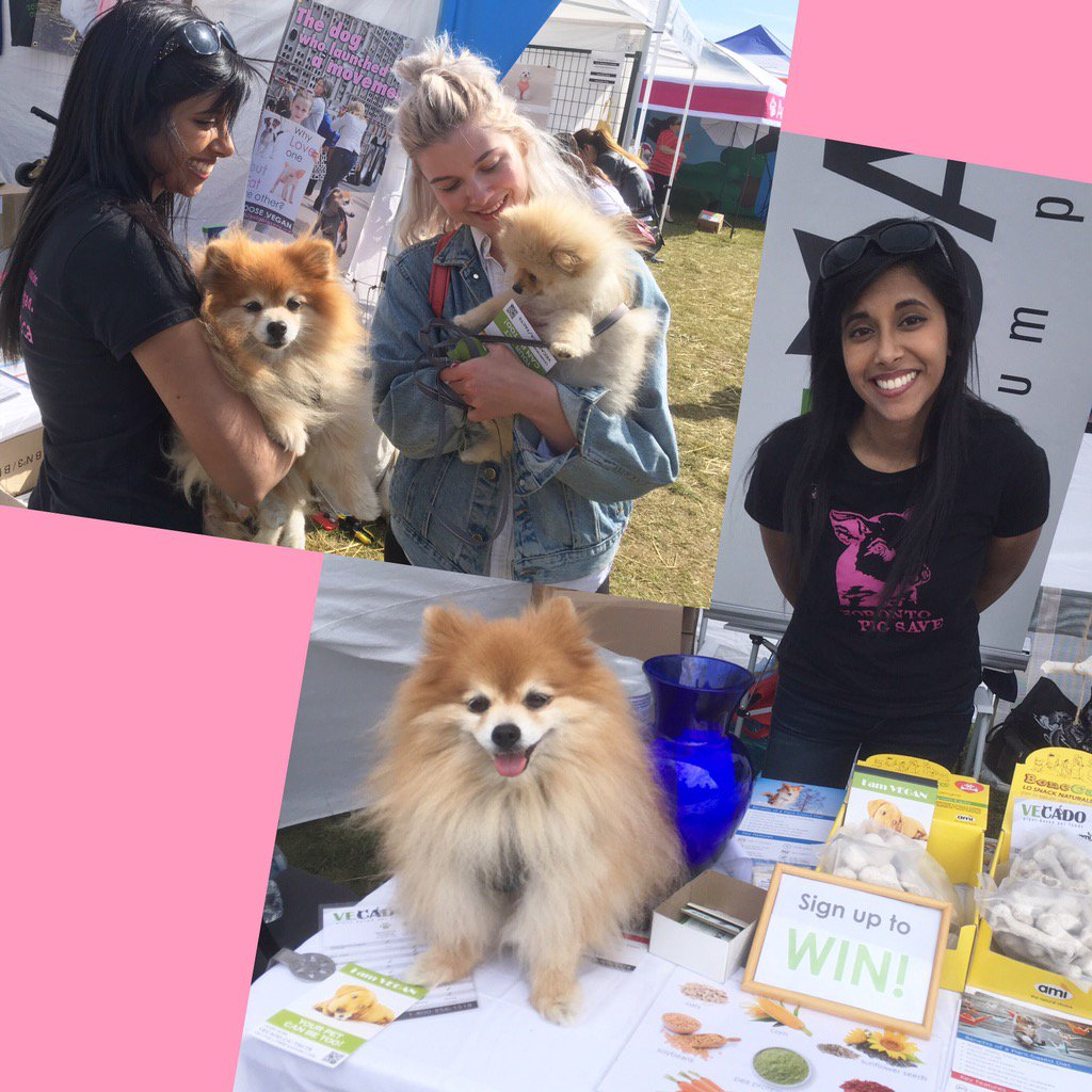 Great time w/ @PomPomthePom &amp; @climatevegan doing outreach about #vegan dog food like #VecadoPetFood at  @woofstock!<br>http://pic.twitter.com/ySvIiF5gtD &ndash; à Woodbine Park