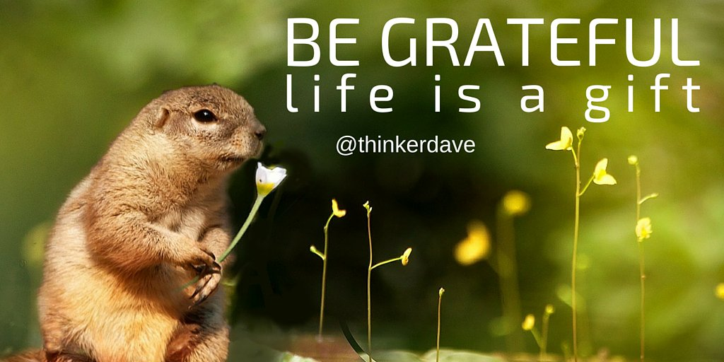 #Live #Love #Smile appreciate the little things say &quot;thank you&quot; think of all the things others make possible  #freeSPIRIT<br>http://pic.twitter.com/4S7dVykju0