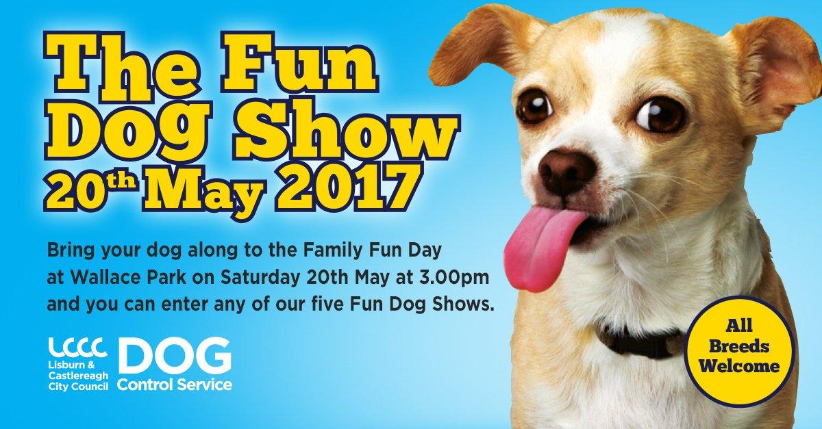 Dog Show Lisburn