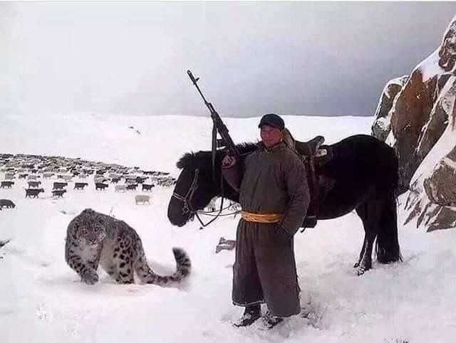 IMAGE: Mongolian shepherd with an AK-47 and his pet snow leopard