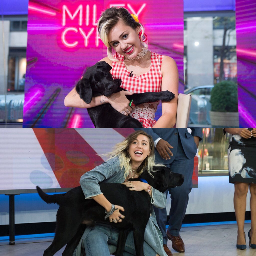 No matter how old I get, I will always love my friend @MileyCyrus! #TODAYPuppy