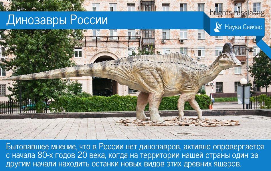 #наука #палеонтология #динозавры  Слухи о том, что в России нет динозавров, сильно преувеличены: https://t.co/NxESPgSt60