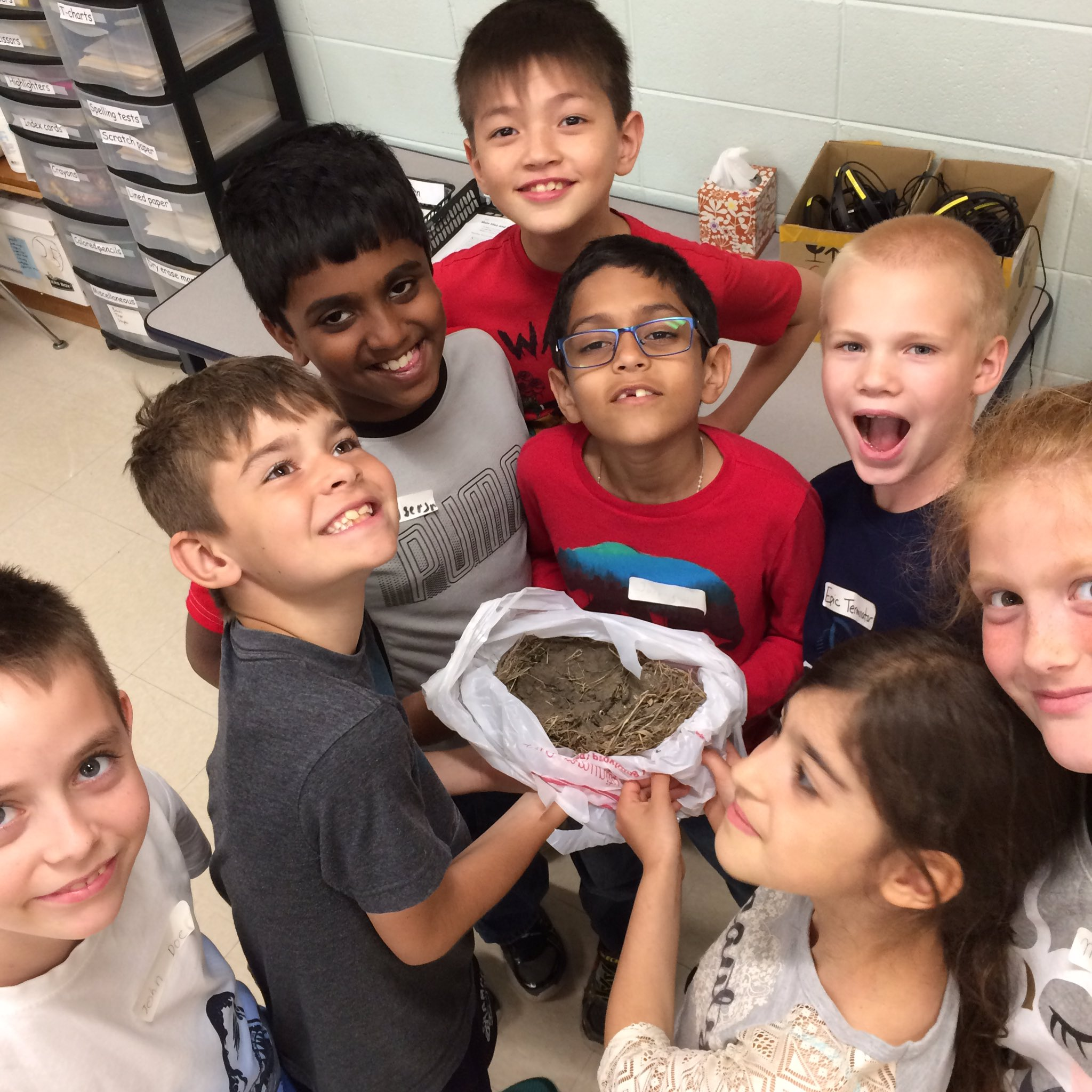 Amazing bird nests: examining a well-constructed nest. #iginspires. #rtsd26learns https://t.co/HkwXL6ZcAd