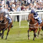 Now 2/4, left, FASHION QUEEN (Aqlaam) @DannyTudhope wins 5f 3yo LR Westow Stakes @yorkracecourse today for @omeararacing