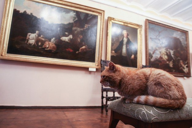 #InternationalMuseumDay  Frankie prefers post-impressionism pieces and work from the Hudson River school.