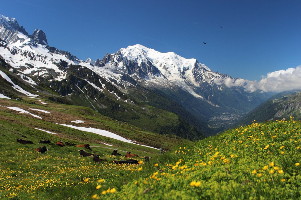 This iconic #walking  #holiday  in the #MontBlanc  alps offers three diverse experiences in three countries. https:// goo.gl/9QSVKp  &nbsp;   #France <br>http://pic.twitter.com/cqDXlhONDd