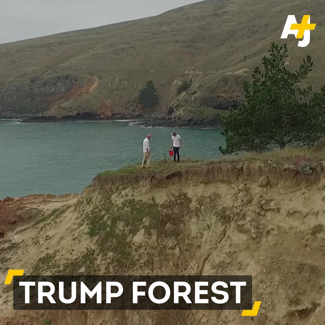 What if we planted a tree every time President Trump denied climate change? That's what Trump Forest is all about.