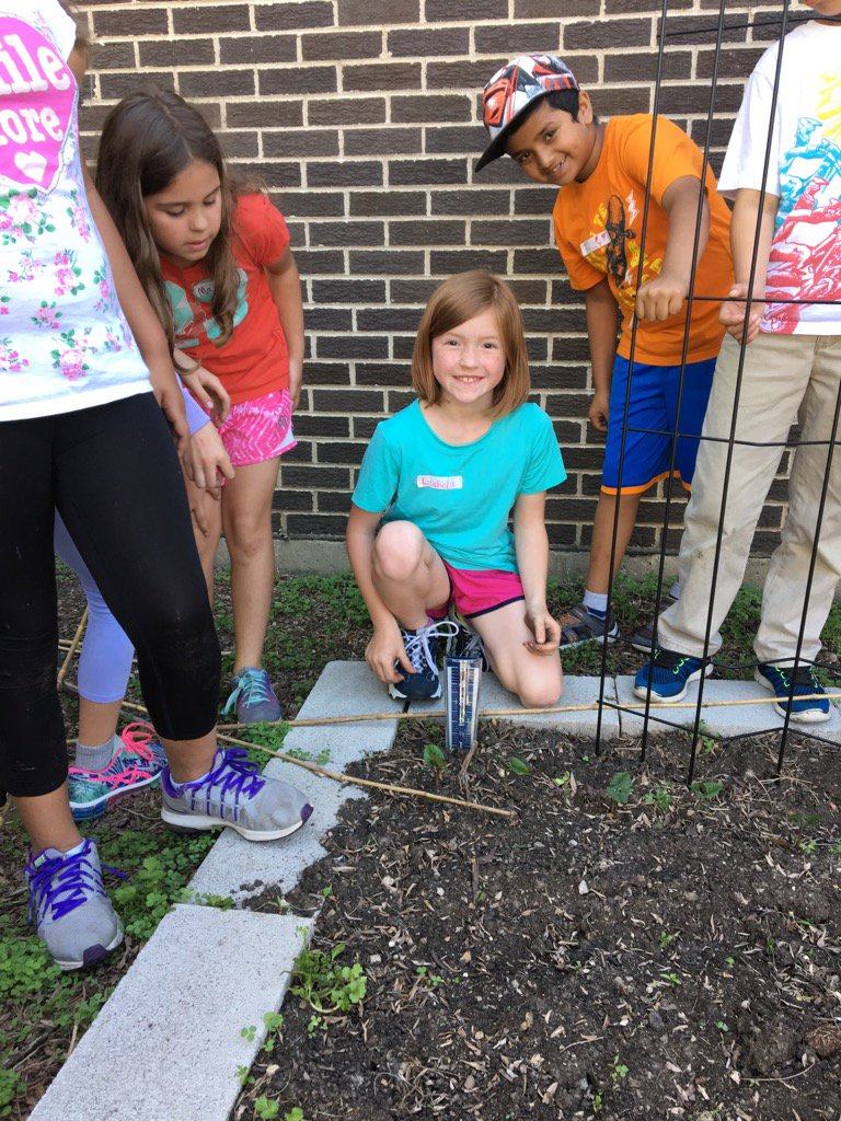 Water gauge is bone dry. Rain for our veggies would be welcome! #iginspires #greengardenclub https://t.co/ioDctr8sMR