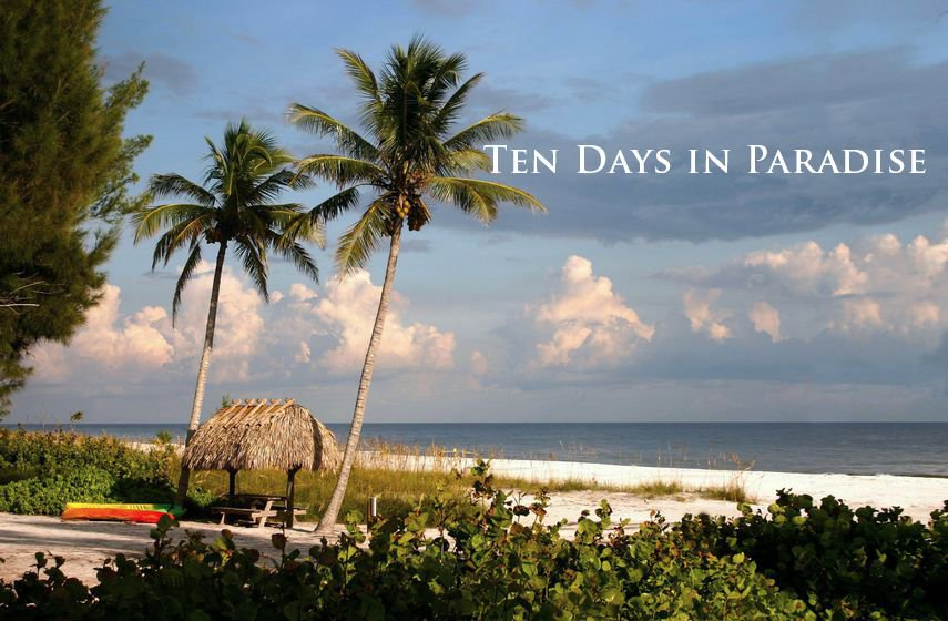 """""""Smart, evocative, unforgettable.&quot;  TEN DAYS IN PARADISE   http:// bit.ly/2qxoftO  &nbsp;   #KindleUnlimited #Florida #FridayReads #indieauthor <br>http://pic.twitter.com/FwDnB5vP7b"""