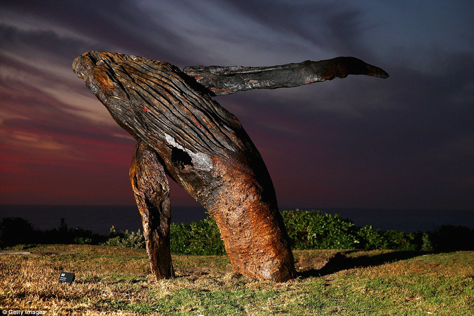 Sculptures By the Sea,  features Michael Greve's 'Breaching', Marks Park pic.twitter.com/CkhAfubBIg