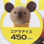 グルメもがんばっている!東山動物園のコアラのアイスがなんとも言えない表情をしている