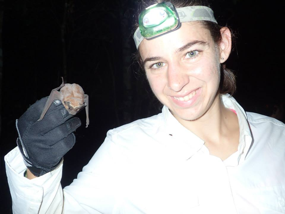 Hi @BillNye fellow Cornell Ultimate alum here. I study how #bats use olfaction in foraging &amp; communication #BillMeetScienceTwitter <br>http://pic.twitter.com/E40VZHtHyS