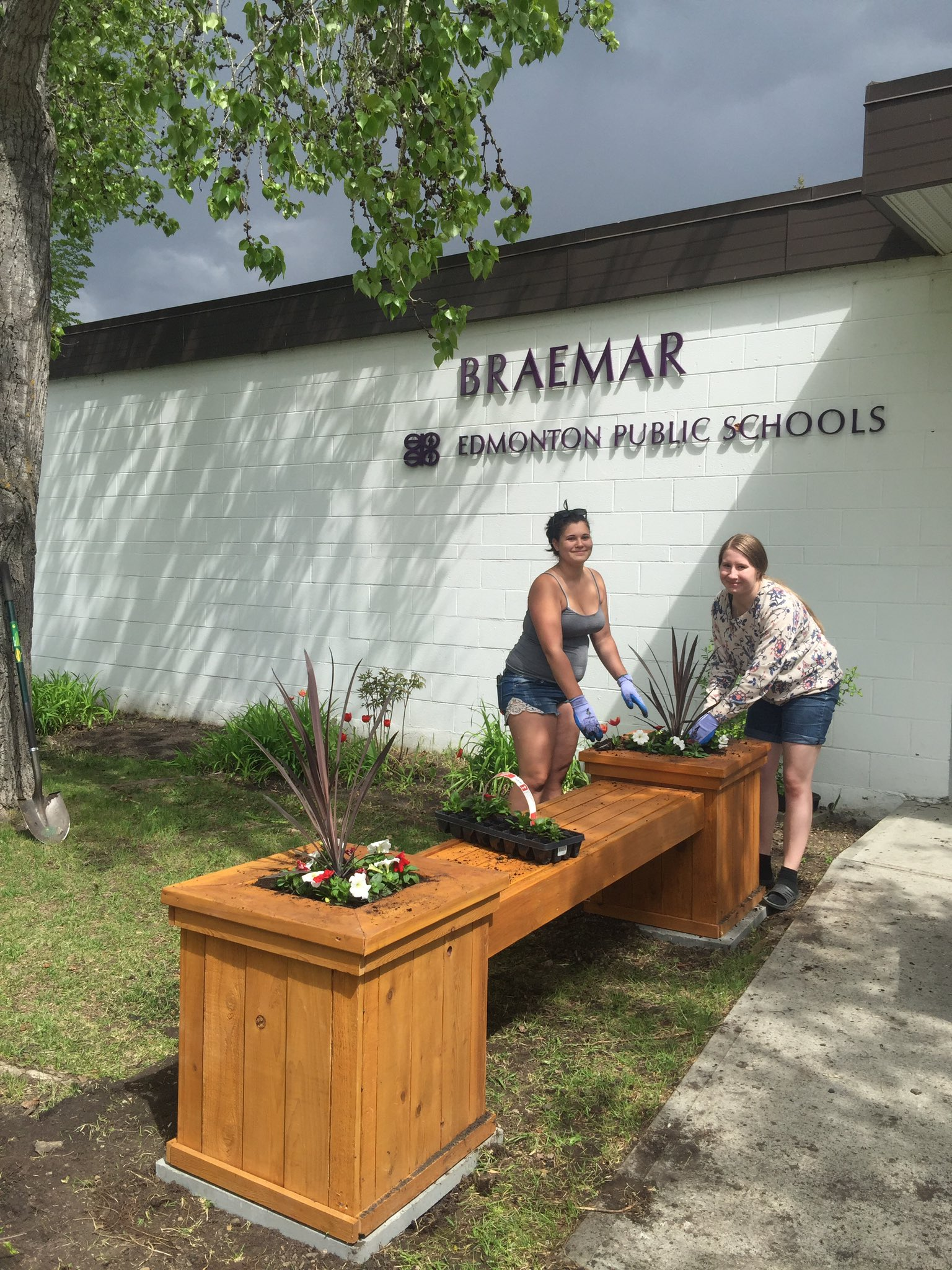 Plants for the new planter at Braemar #YAS2017 #epsbnews https://t.co/wZsMJtvcYo