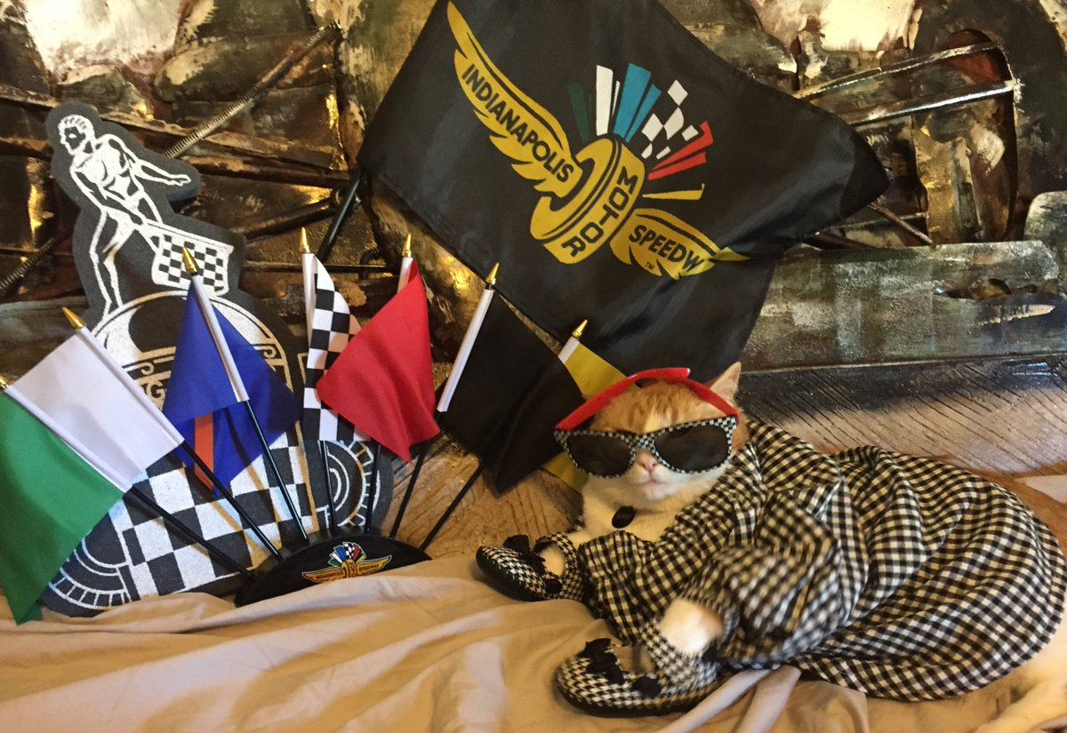 Hey @ButlerBlue3 we cats also purrtiently waiting on 239mph speeds again w #Indy500 #FastFriday ! Meow got ur #500FashionFridays right here!<br>http://pic.twitter.com/o4VUsZJOqT