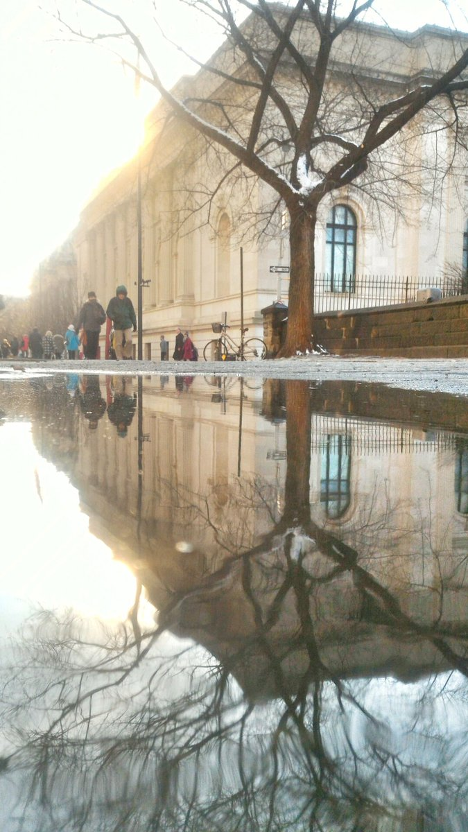 I have an obsession with puddle photography. #puddlegram More @ https://t.co/wxHDWkNbv6 https://t.co/LuiodSh4Ti