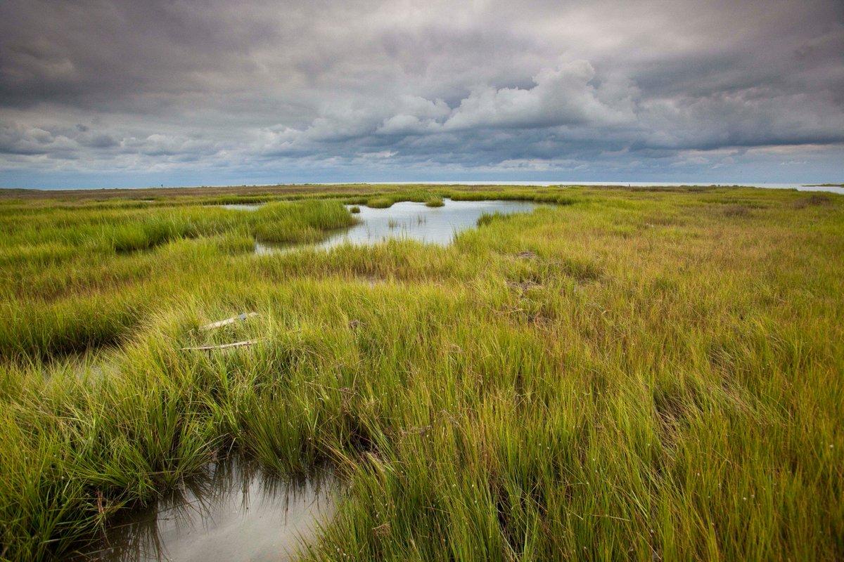 Chesapeake Bay Found (@chesapeakebay) | Twitter