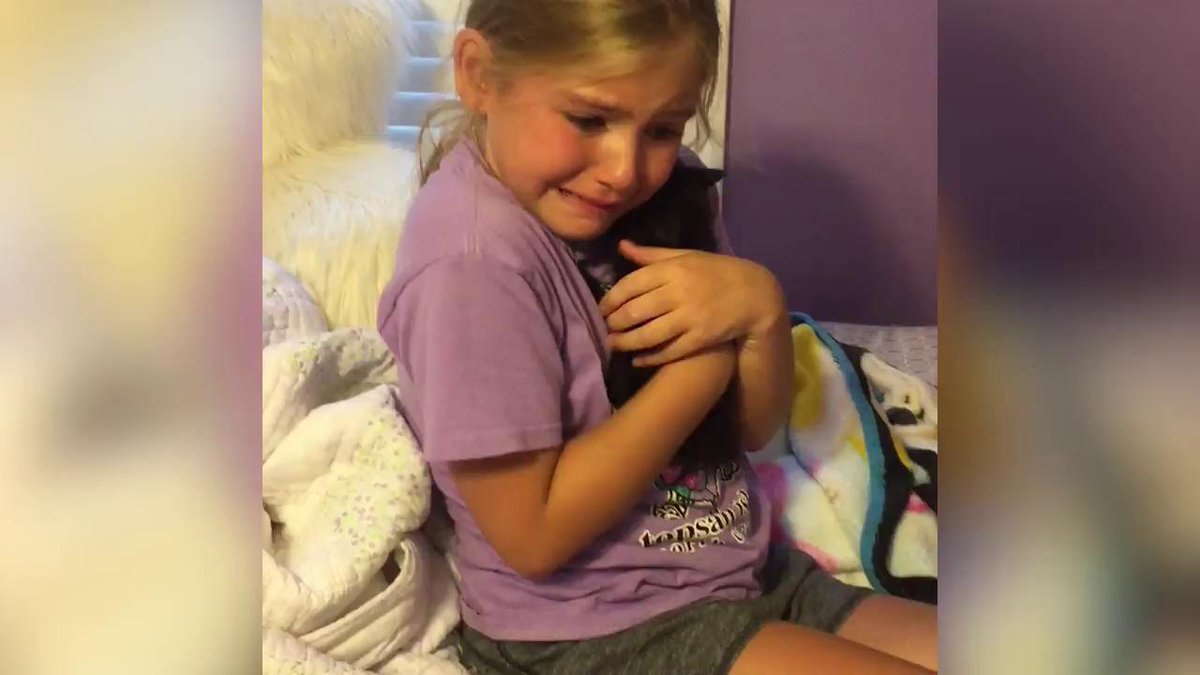 You'll laugh, you'll cry, this little girl and her new kitten will make your entire night: