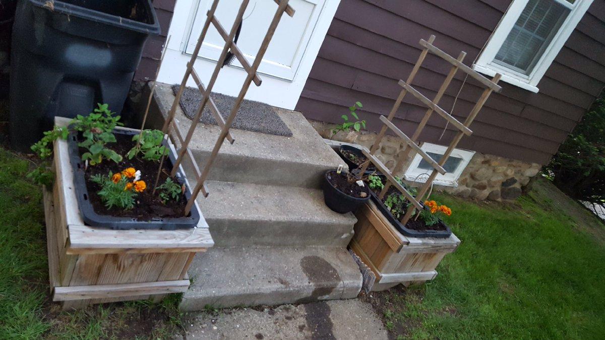#veggies are officially in the #planters  #etsychaching #woodworking #handmade #custom #follo4follo #like #order #forsale #EtsySeller<br>http://pic.twitter.com/nFiIGI29Vt
