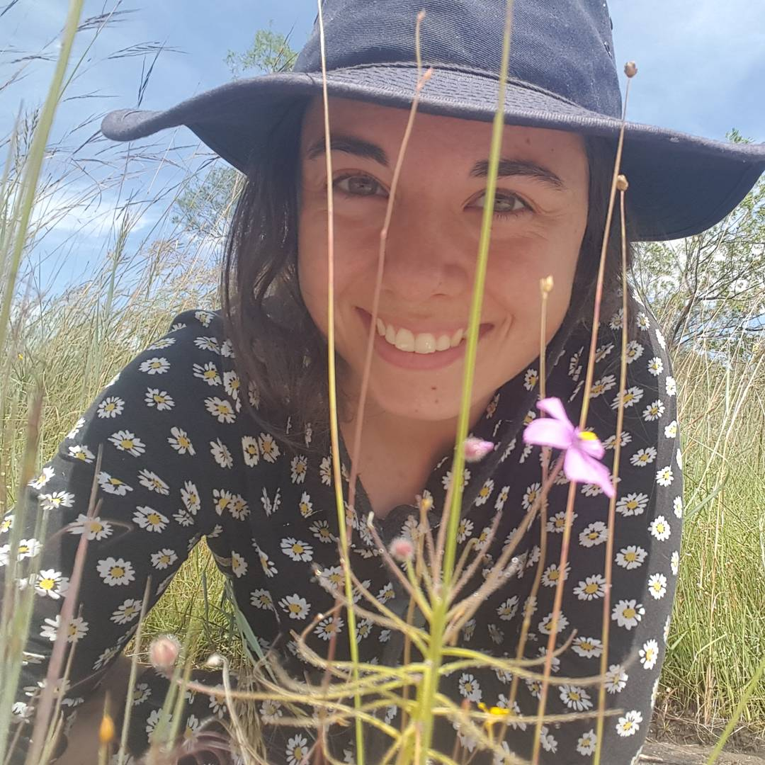 Hi @BillNye, I&#39;m Laura, a botanist researching carnivorous plants in Australia. They&#39;re really cool!  #BillMeetScienceTwitter <br>http://pic.twitter.com/Bsi57dghcY