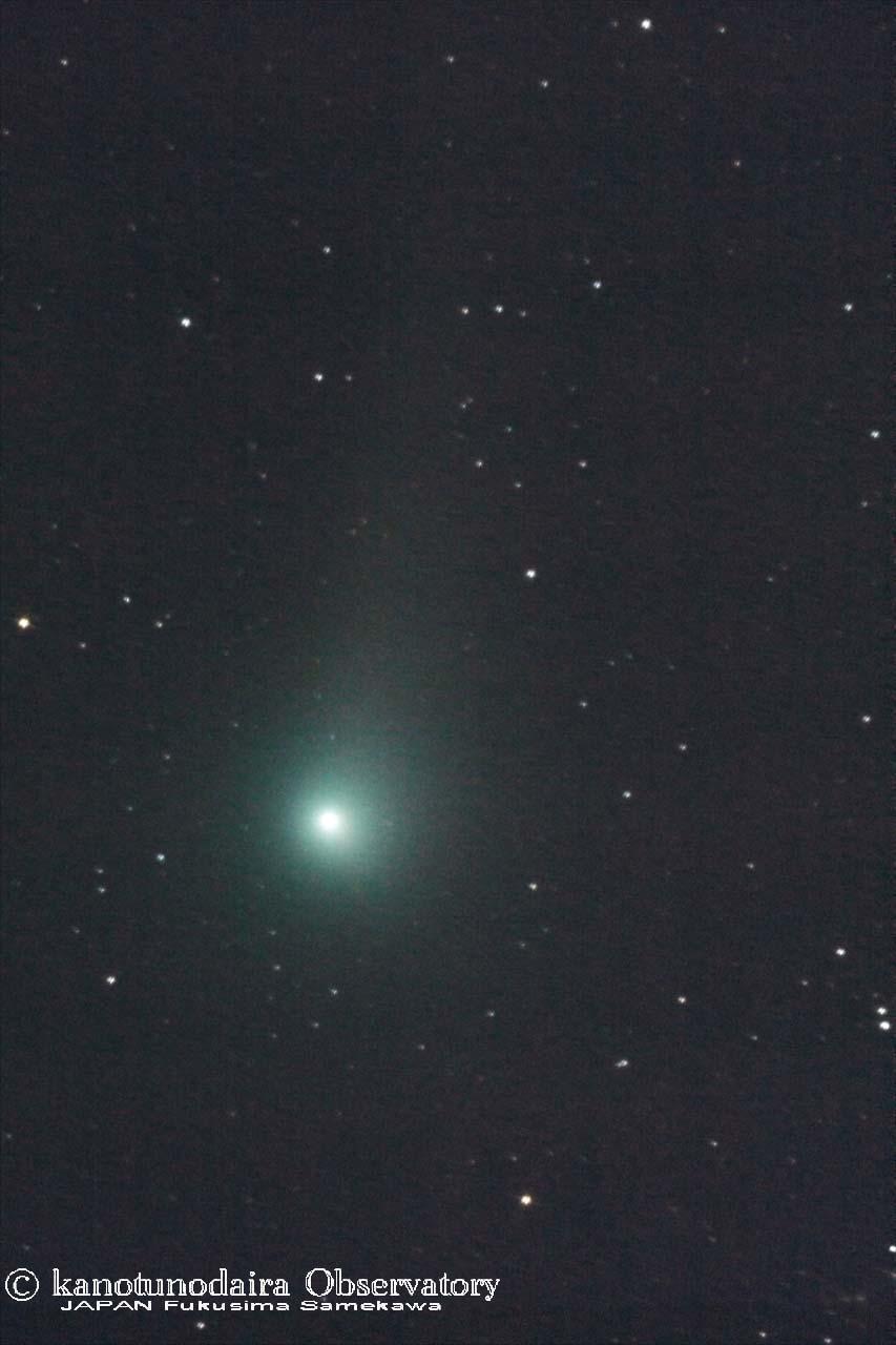 見頃のジョンソン彗星(C/2015 V2)2017/05/20