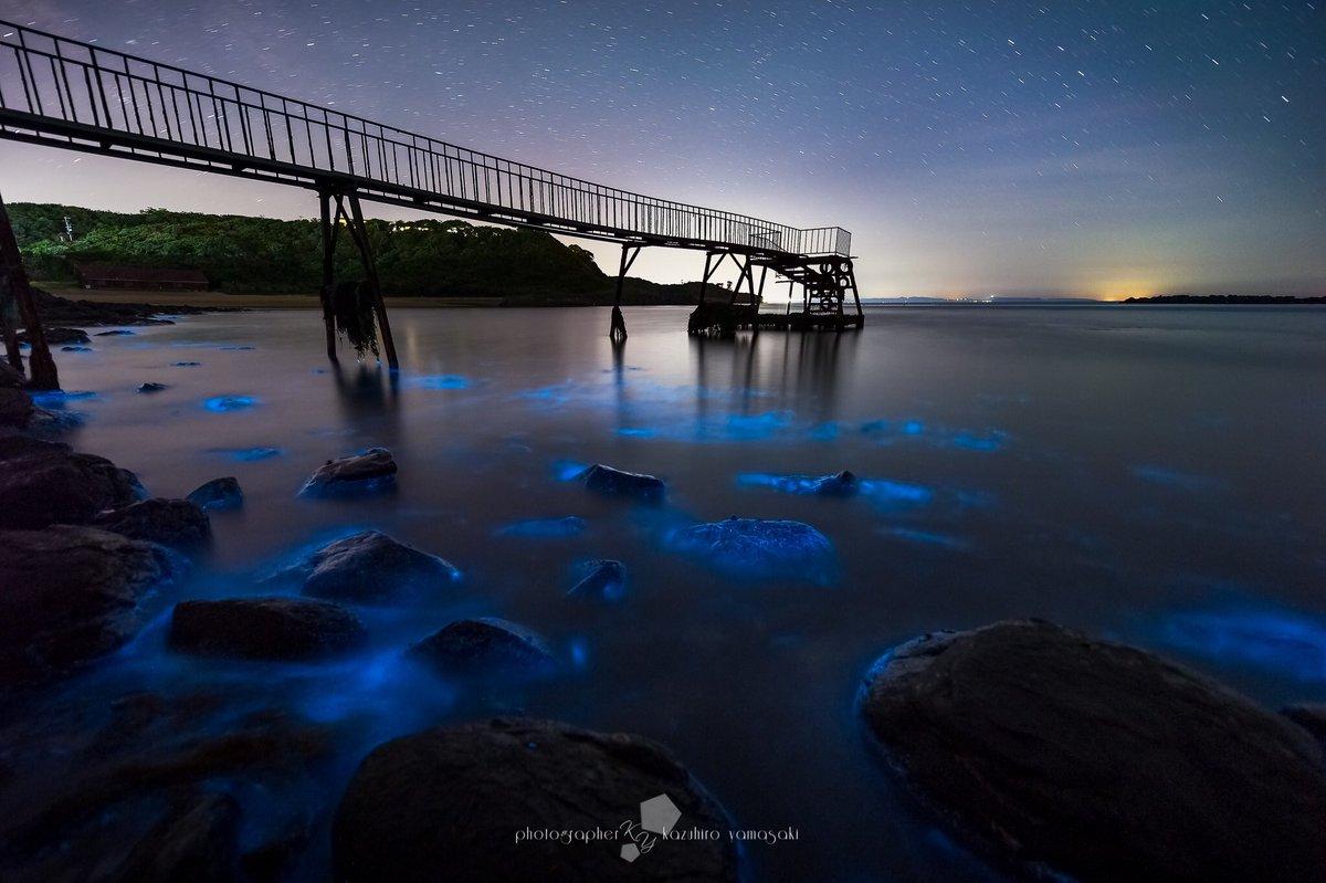 夜光虫と天の川「佐賀県唐津市」昨夜は特別な夜でした( ´ ▽ ` )ノ pic.twitter.com/gtdcK4EJHf
