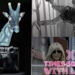 https://t.co/hjQENqGbGt  #giraffewatch #giraffe #marlamaples #TimesSquareCrash #nuclearfootball #xxxtimessquare