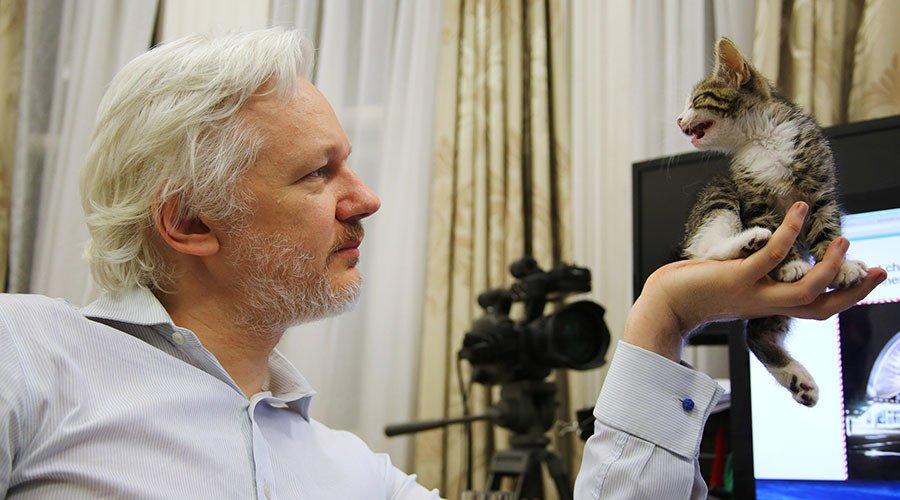 #Assange case always had disturbing political background – Ecuadorian FM to RT https://t.co/BapFKYRg30  #Wikileaks