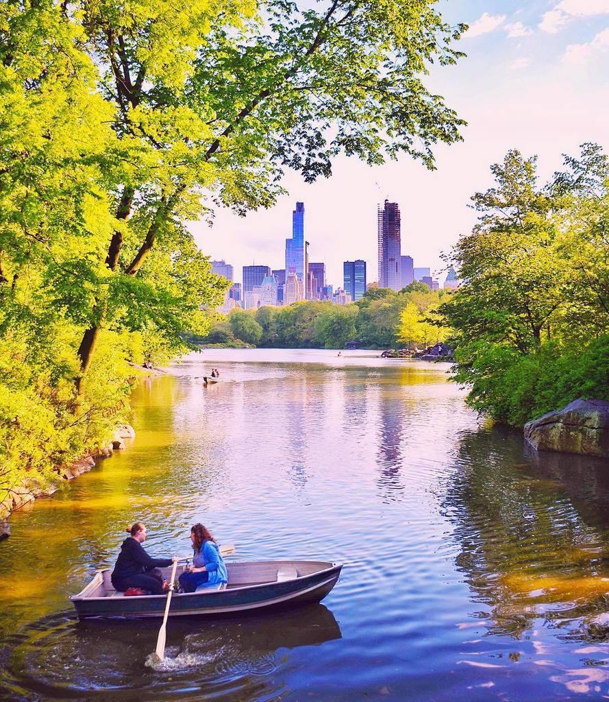 Central Park by gigi_nyc #newyork #nyc<br>http://pic.twitter.com/iO1UTIXkVw