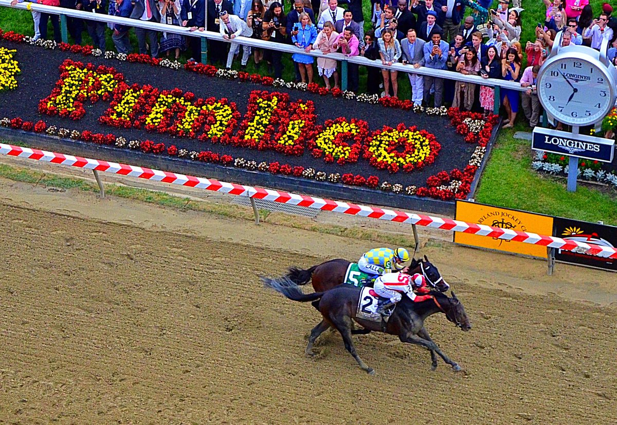 Ippica: Cloud Computing sorprende e vince il Preakness Stakes