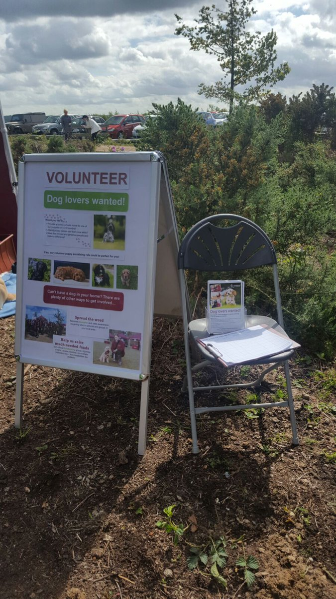 Find out about #volunteering @HearingDogs @NT_NewForest #FoxburyCommon today! Love 🐶s? Get involved!! @SHHearingDog