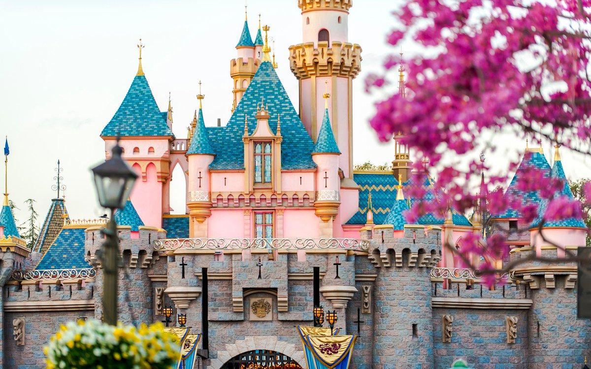 розовый замок фото разных народов